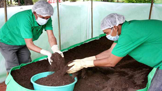 Vermicompost Bed India